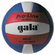 GALA Pro Line Mini Volleyball- Größe 4.