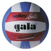 Gala Training Star Volleyball