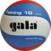 Gala Training 10 Volleyball
