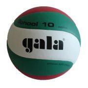Gala School H, bunter Volleyball mit ungarischen Nationalfarben, empfohlen vom Ungarischen Olympischen Komitee (MOB) und vom Ungarischen Volleyball Verbandes (MRSZ),