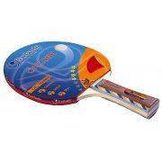 Garlando Cyclone **** ITTF Tischtennisschläger für Training