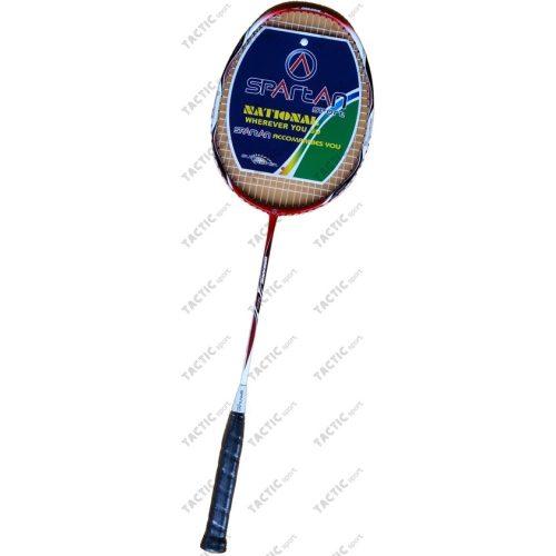 Qualitäts-Federballschläger aus Fiberglas und Grafit – Modell Pro 300
